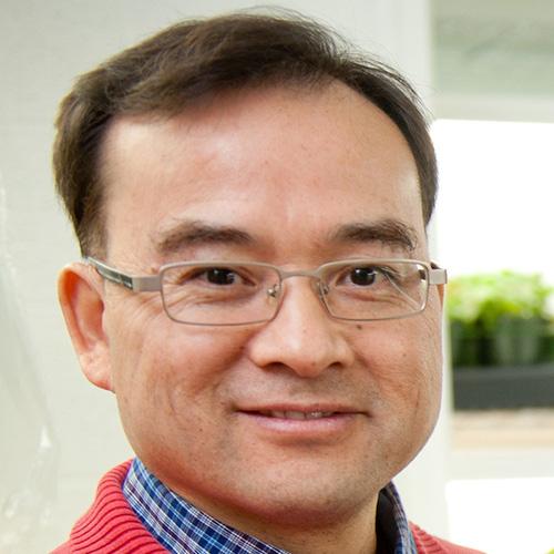 Deyu Xie
